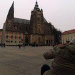 katedrala svetog vida